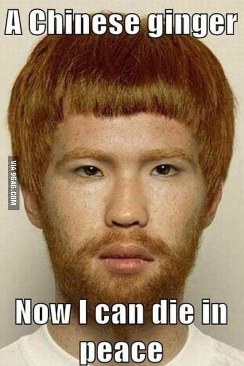 Nfl Memes Best Collection of Funny Nfl Pictures  Meme Center