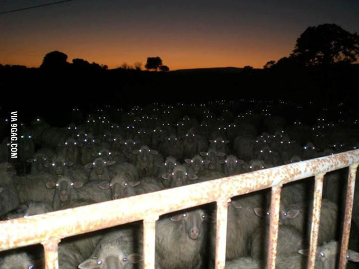 My class when I walk into class late