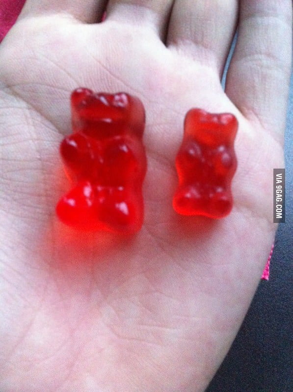 Alcohol makes Haribo Bears bigger and tastier