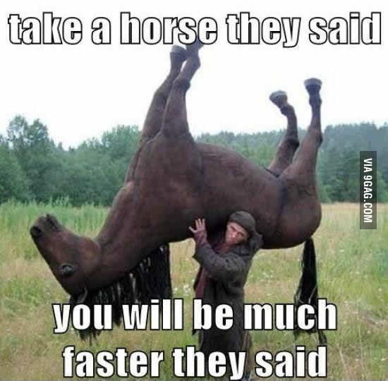 Taking a horse