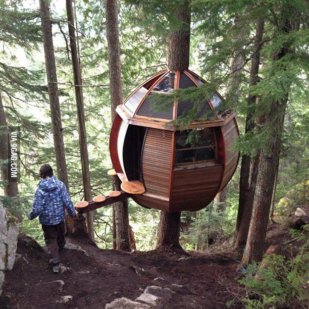 Stumbled upon the coolest treehouse in the forest!