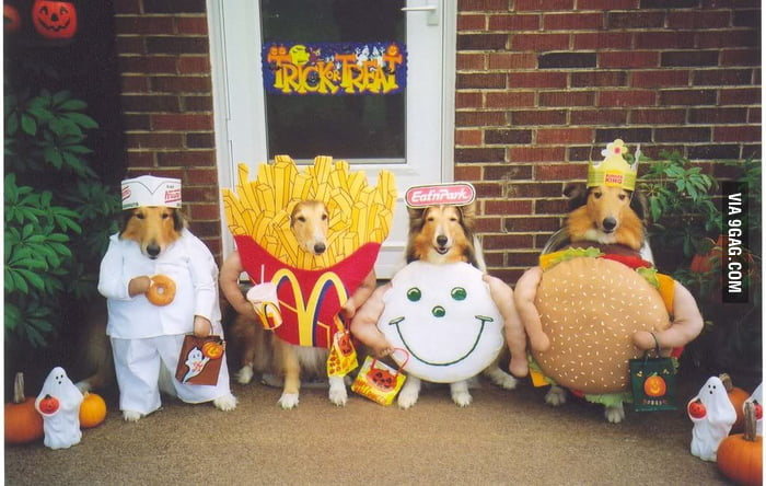 Cosplay Dogs
