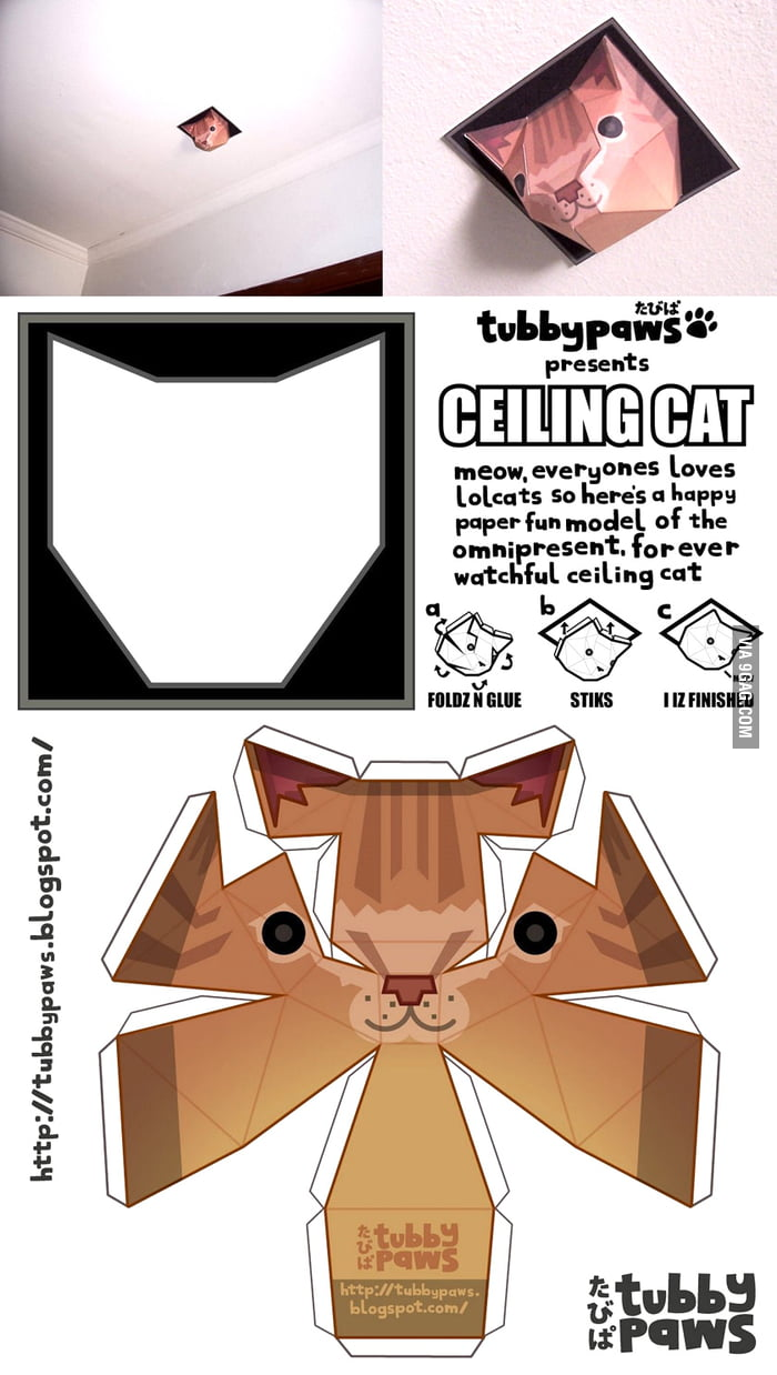 Paper Ceiling Cat (DIY)