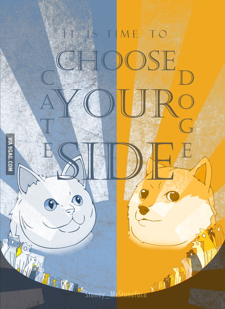 Choose your side! Cate vs Doge!