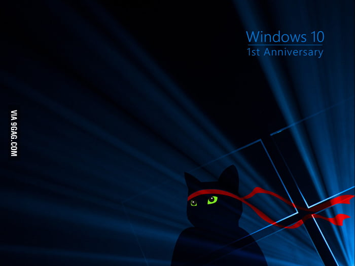 Anyone got the exclusive windows 10 1st anniversary for 1st window