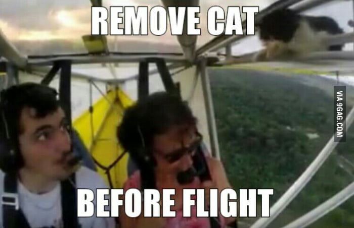 Removed Before Remove Cat Before Flight