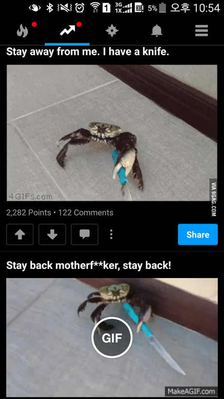 Get your shit together 9gag!