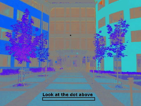 Stare at the dot.