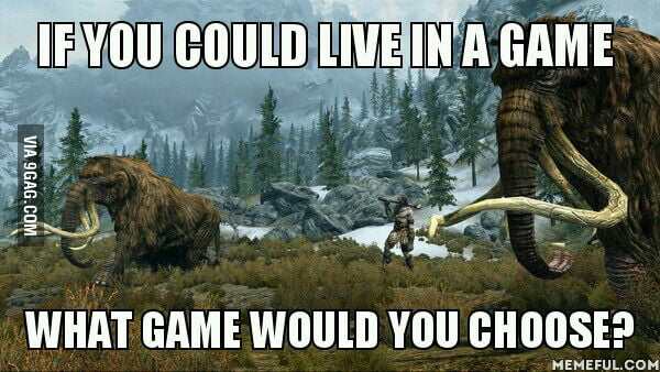 I would choose Skyrim.