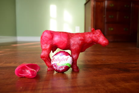I made a cow out of Babybel wax.
