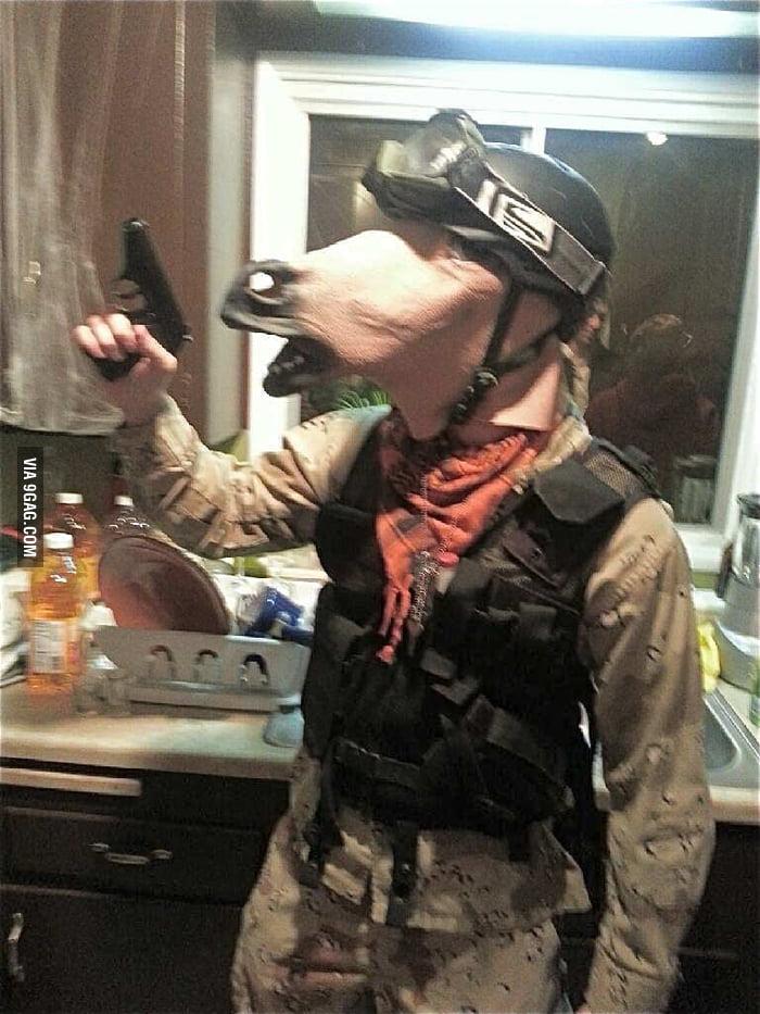 War horse special deals