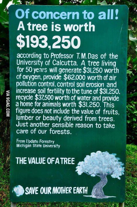 The true value of a tree