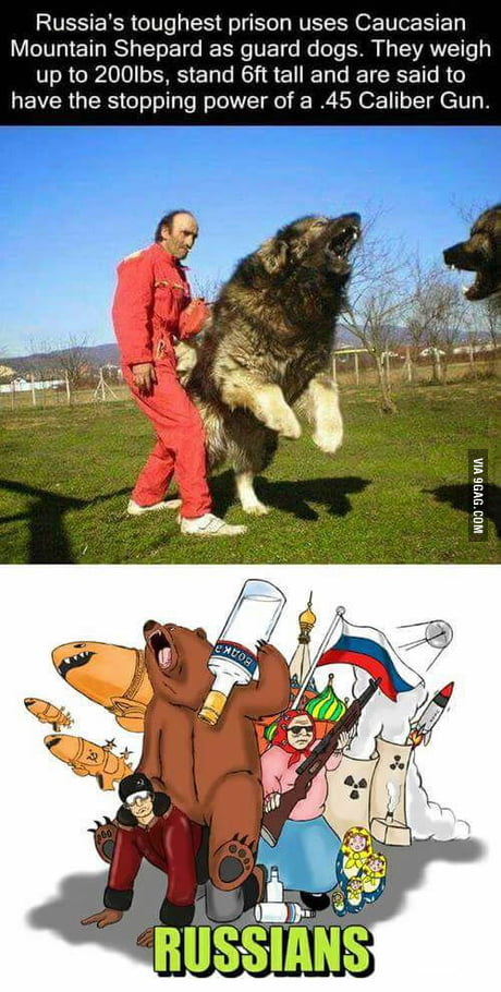 Russians are so badass