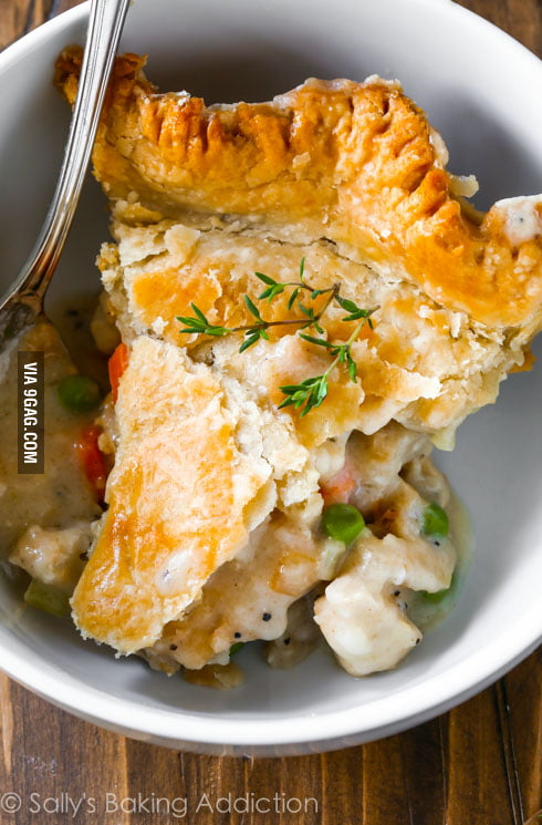 Double Crust Chicken Pot Pie, hello winter comfort food. Looks so ...