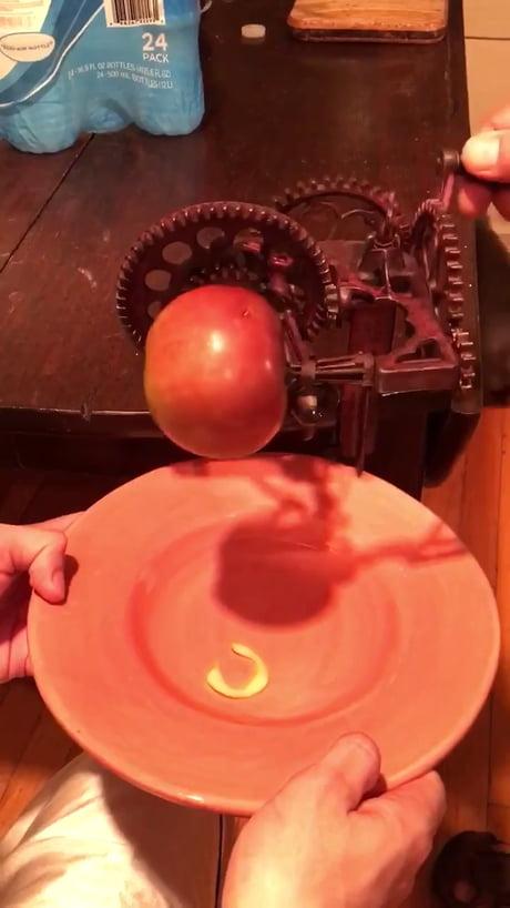 1800s apple peeler