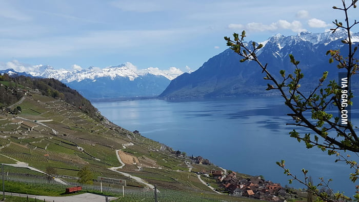 I Live Here In Lavaux I Think Switzerland Is The Most Beautiful Country In Europe 9gag