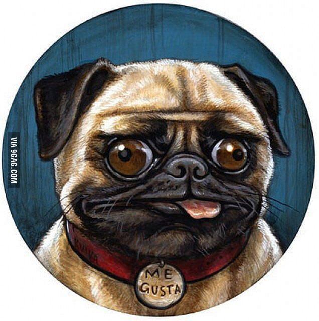 Me Gusta's dog
