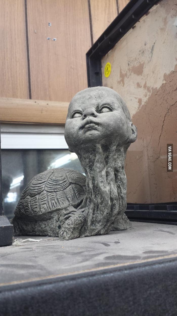 Am I not turtle-y enou...