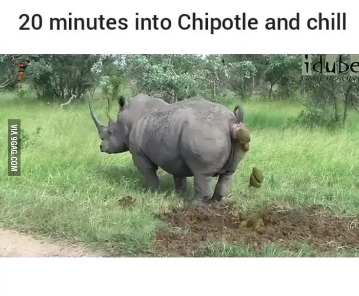 Image result for 20 minutes into chipotle and chill