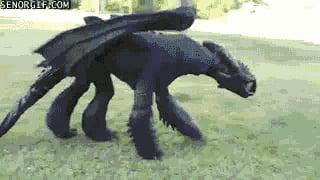 Черная фурия своими руками