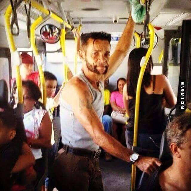 Wolverine in the bus