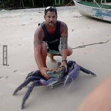 Big Ass Crab in Puerto Rico. Captain?