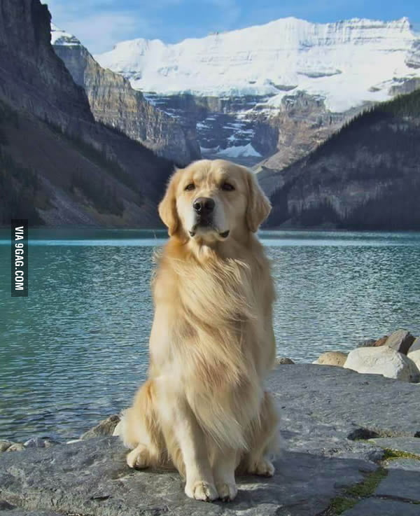 You want majestic? THIS is majestic...