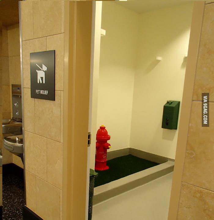 San diego airport has a bathroom for dogs 9gag for Bathroom 9gag