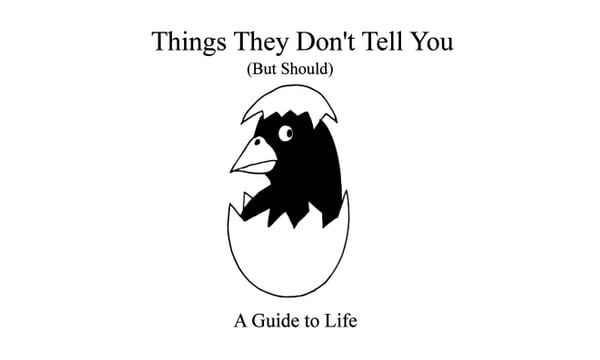 Things They Don't Tell You (But Should) - A Guide To Life