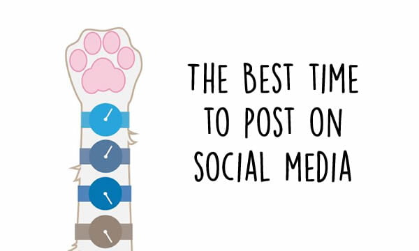 The best time to post on social media, and the worst. - 9GAG