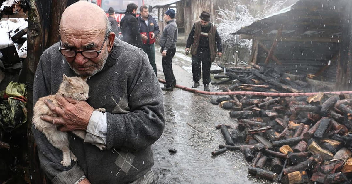 Photos Of Turkish Man Holding Kitten After Fire Captures International Sympathy