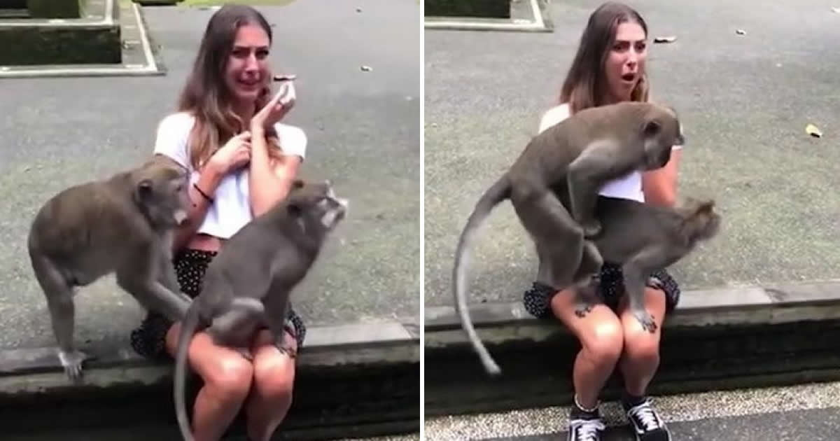 Share Women having sex with a monkey
