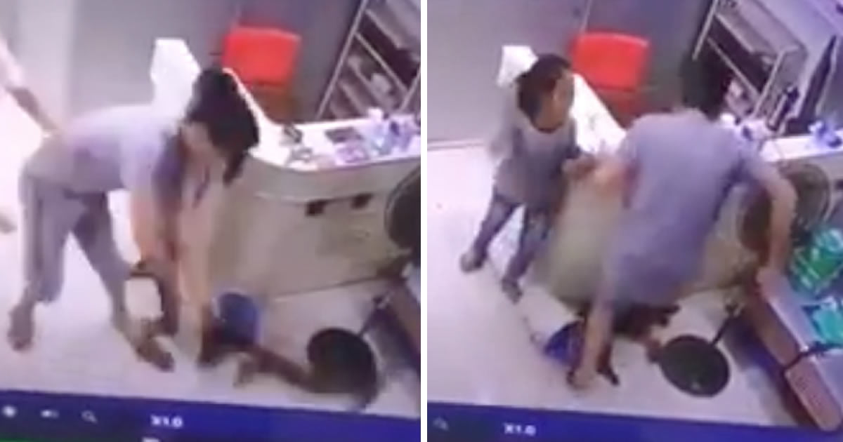 Man Ruthlessly Throws His Dog To The Floor After Seeing The Expensive Vet Bill