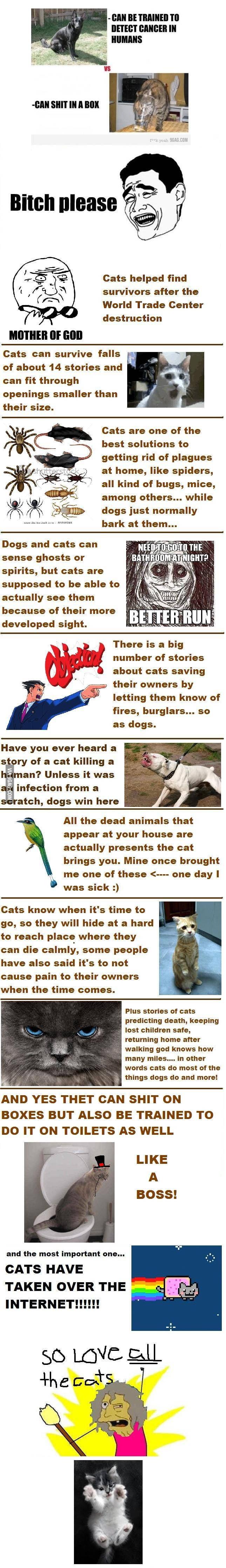 Dogs vs Cats [Fixed]