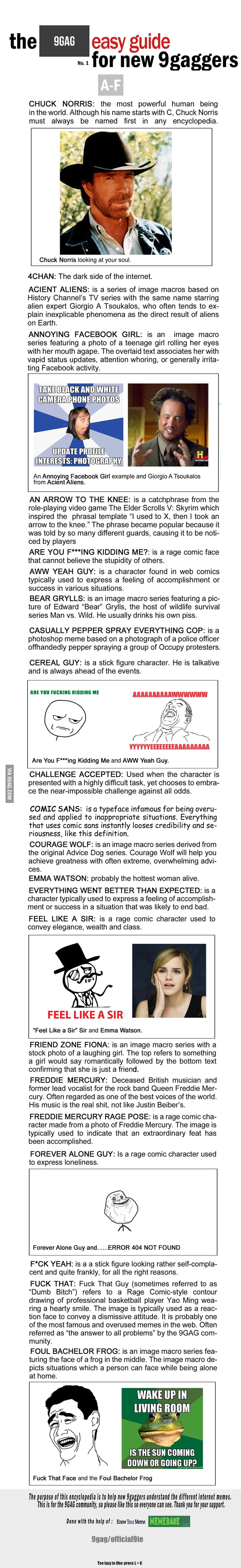 Finally, A Guide For New 9Gaggers To Understand The Memes