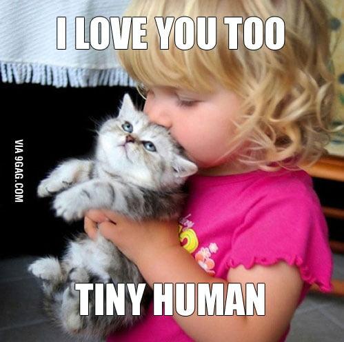 Love you Sir Cat