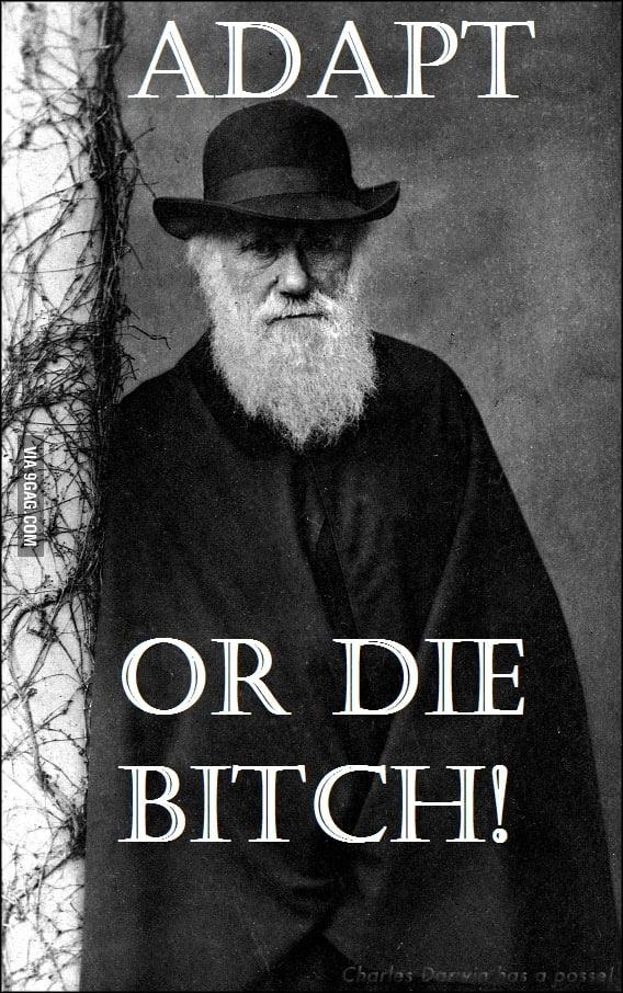 Charles Darwin ADAPT OR  BIT*CHES
