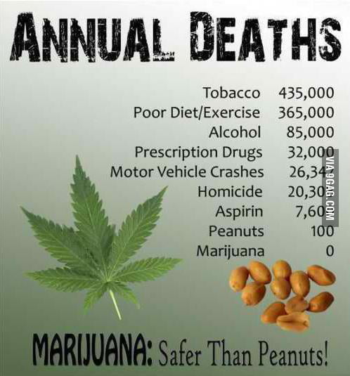 MARIJUANA:Safer Than Peanuts!
