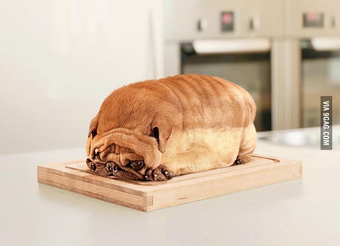 Slice of bread anyone?