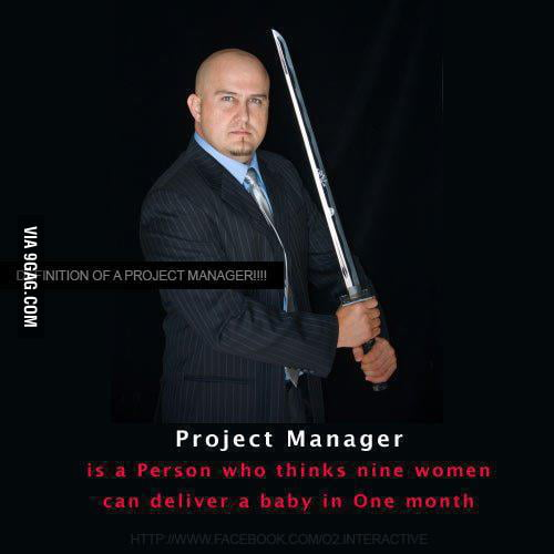 Project manager expectations ....