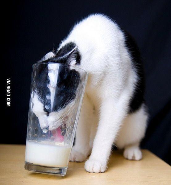 Drinking milk in glass is hard