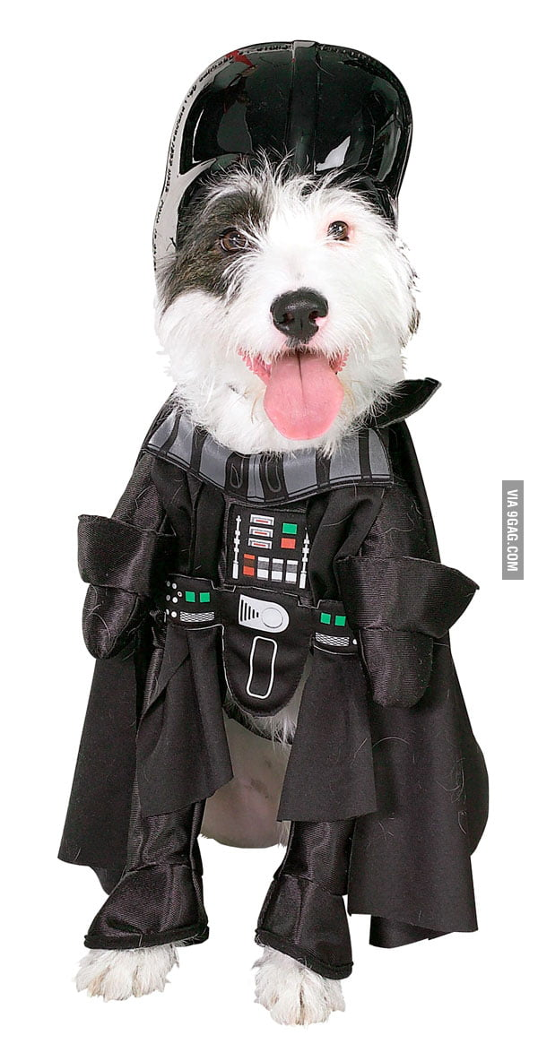 Darth Vader Dog