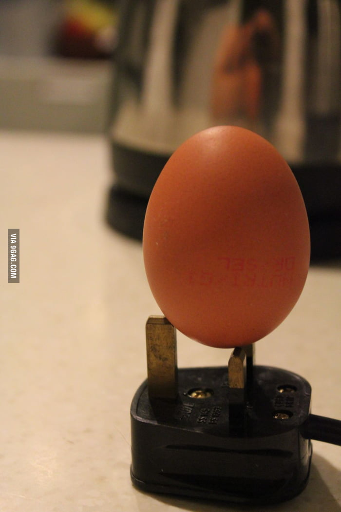 Look Ma! Ma egg can stand!