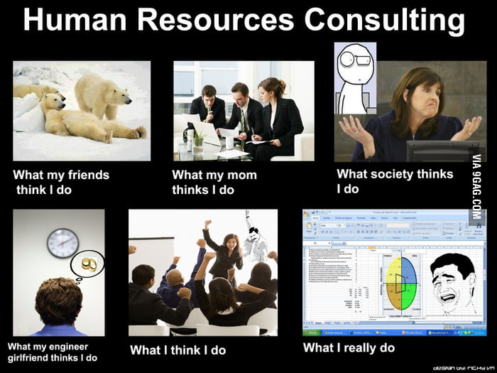 Meme Human Resources: What I Really Do