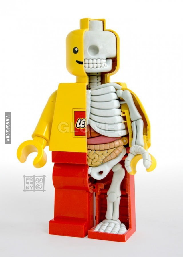 Anatomy of a Lego