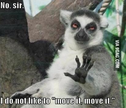 """""""Move it, move it"""""""