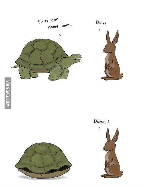 Troll turtle