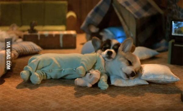 Doggie Pyjamas