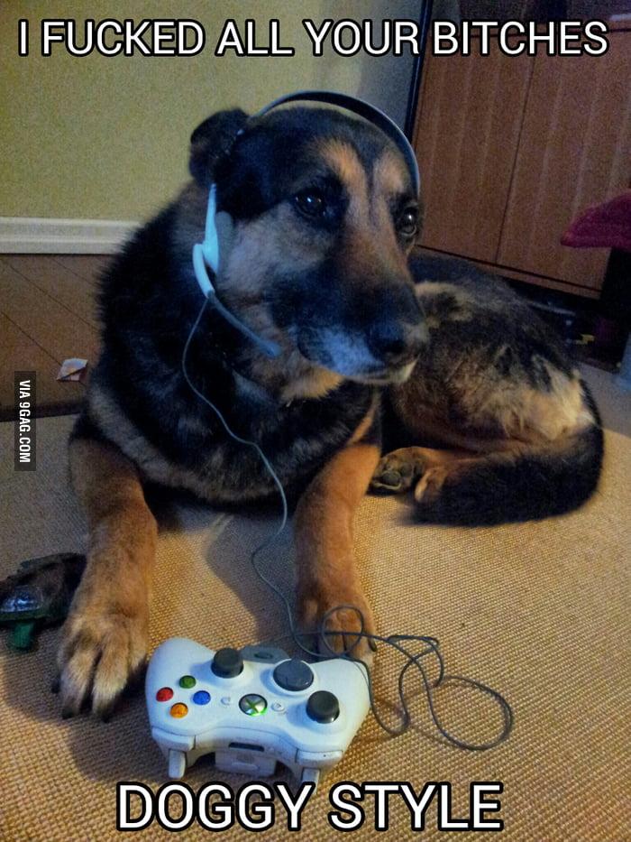 gamer dog 9gag