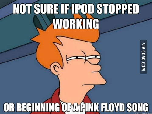 Not sure if iPod stopped working